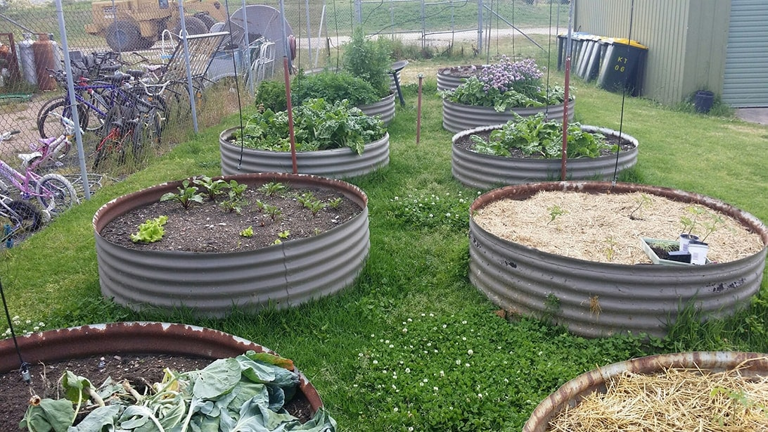 raised garden beds at the Kandos Tip